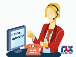 تعیین نام داخلی ها برای سانترال کم ظرفیت