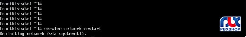 نصب ایزابل روی سرور ESXI