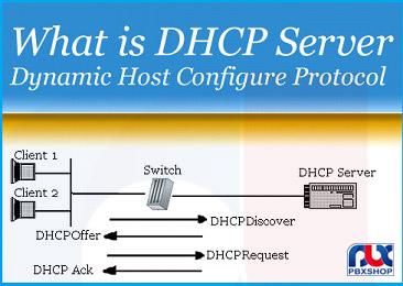 Dhcp چیست؟